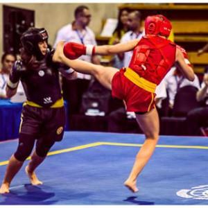elin kick