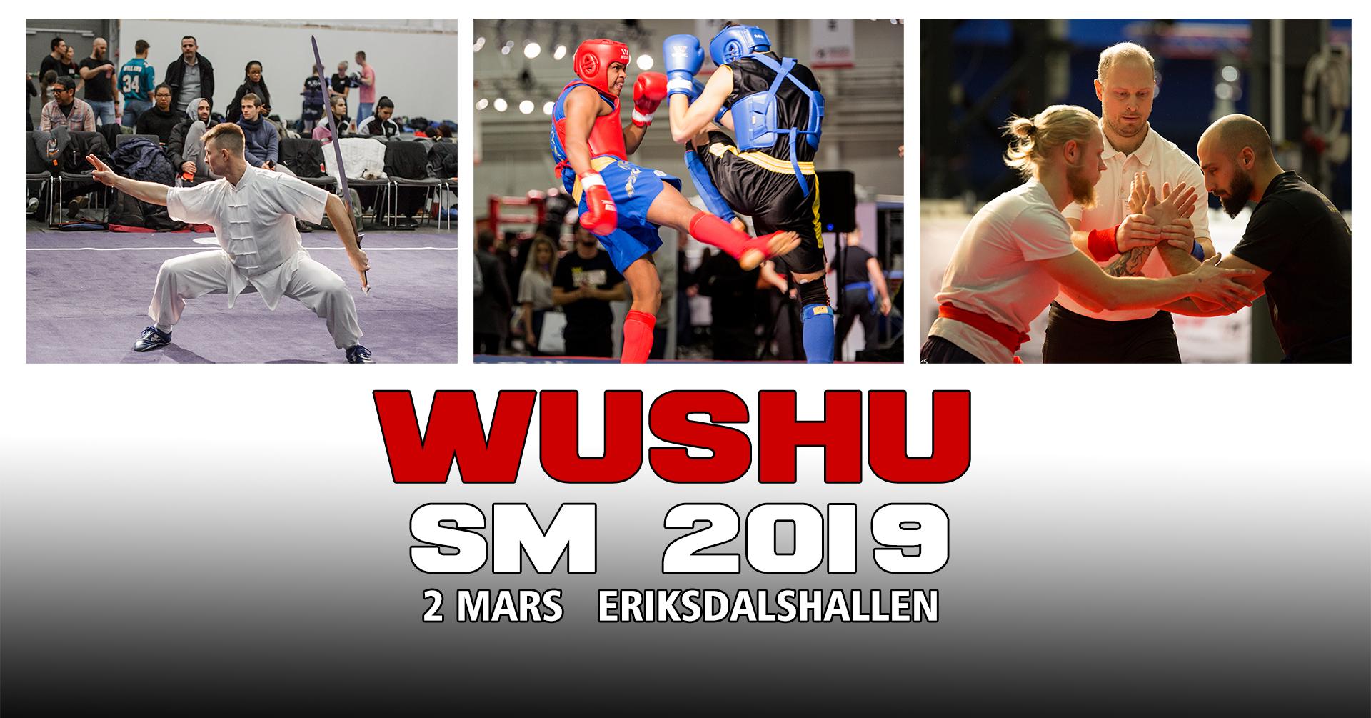 Wushu SM_2019