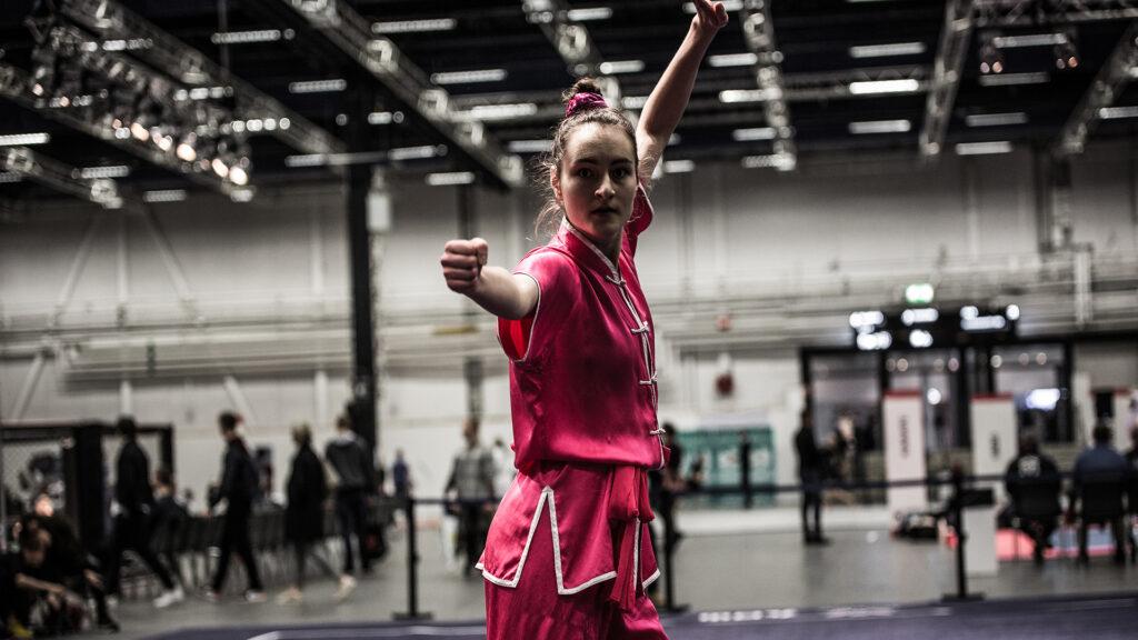 Scandinavian e-Wushu Competition